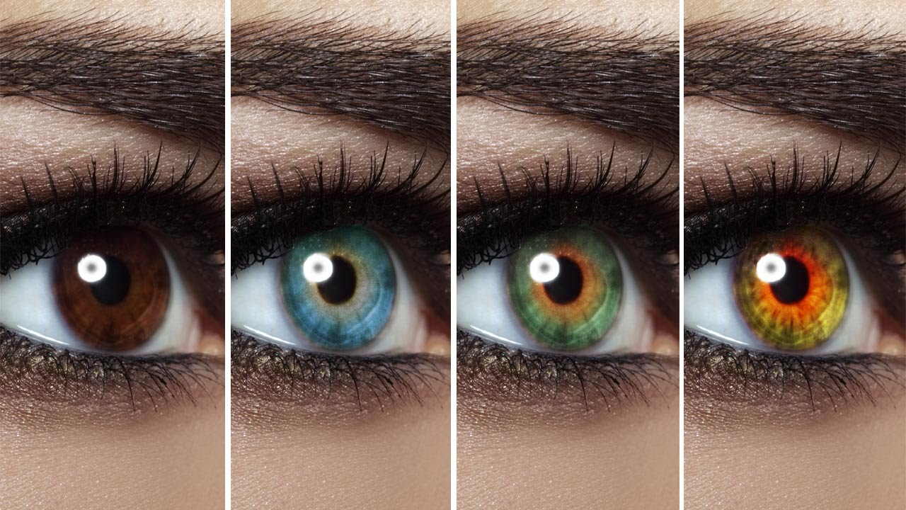 Different Eye Colors and Personality Traits Surfolks