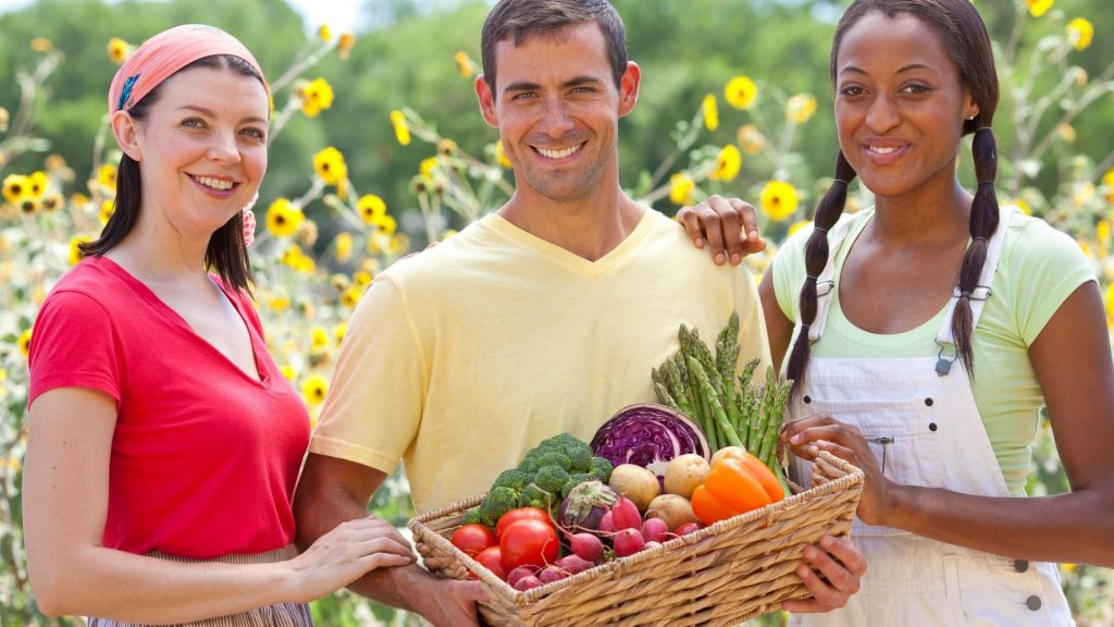 12 Tips to Stay Health With Organic Way
